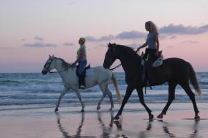 caballos playa cadiz